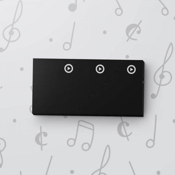 Blank 3 Button Sound Tag - Black