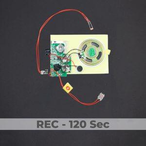 Light Activated Sound Module - Rec 120 Sec
