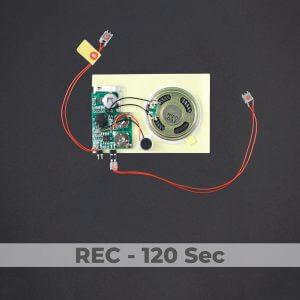 Push Button Sound Module - Rec 120 Sec